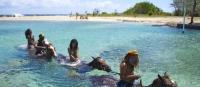 Ямайка от А до Я: отдых на Ямайке, карты, визы, туры, курорты, отели и отзывы