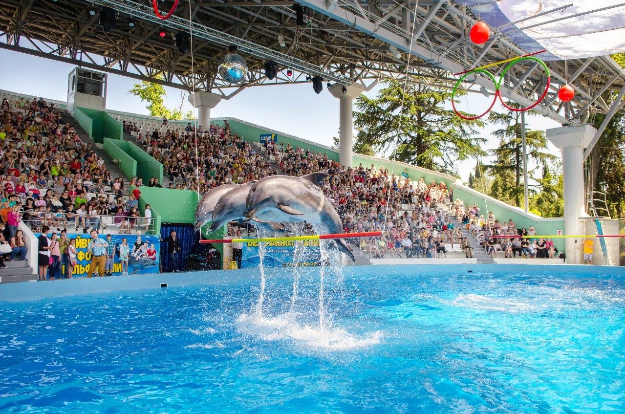 Фото дельфинария