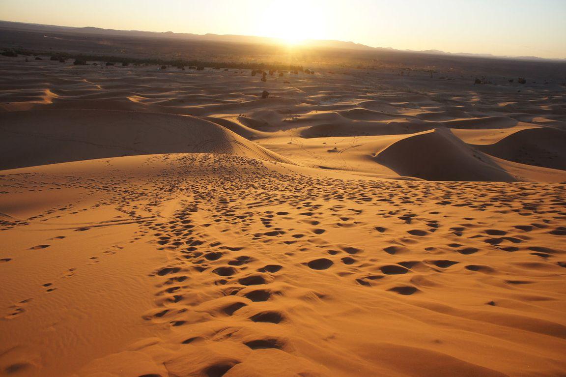 Безжалостная пустыня Сахара