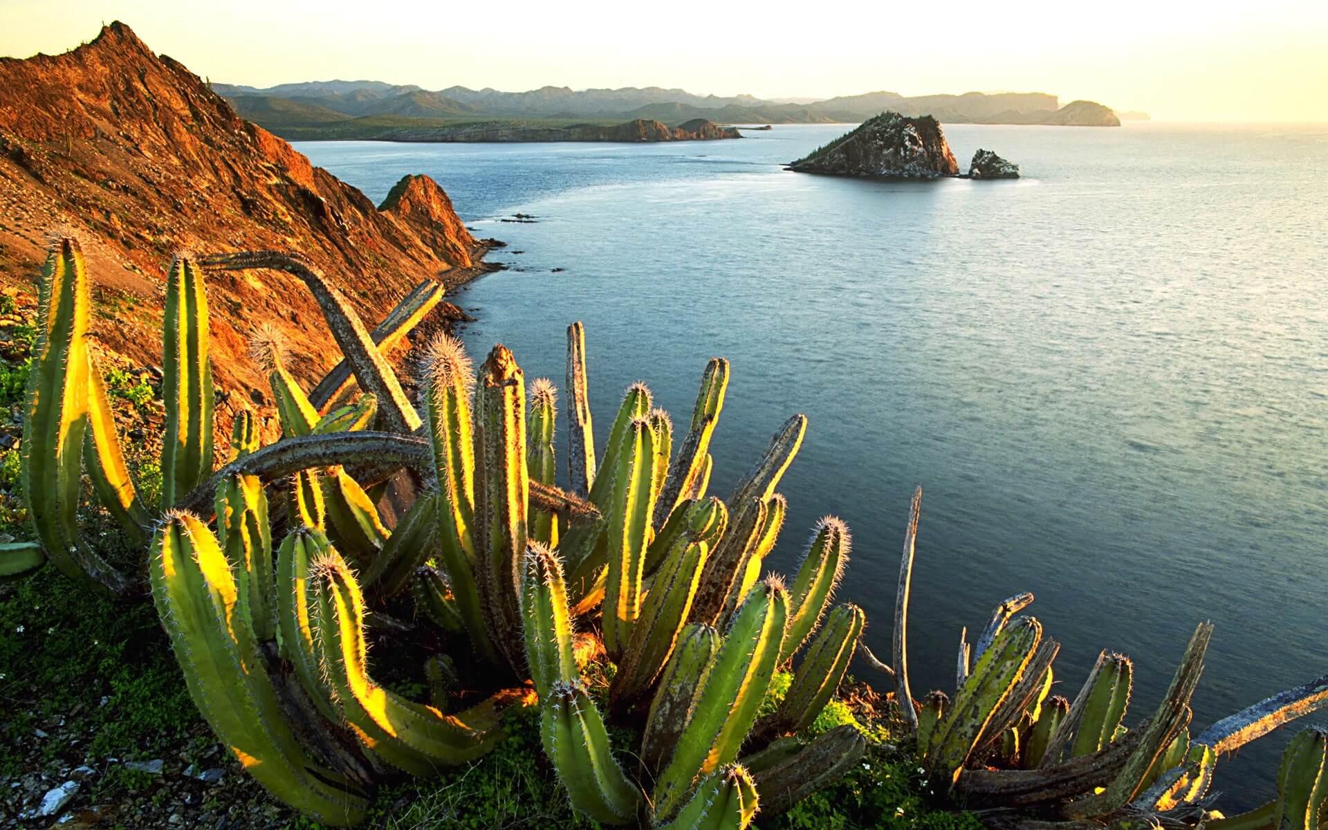 Фото пейзажа в Мексике